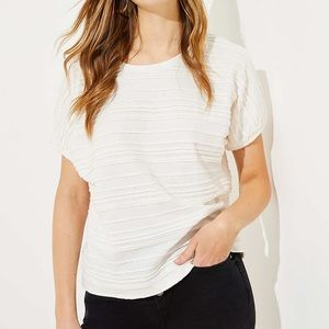 New LOFT scalloped bubble sleeve top size Small